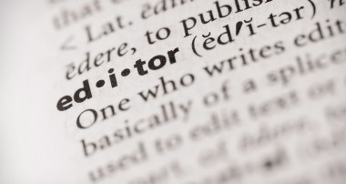 The Tycoon Editor- Susan Malone