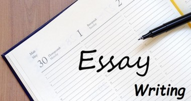 4 Steps for Selecting the Best Essay Writing Service